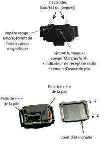 caracteristique-collier-canicom-800