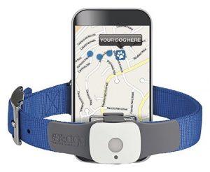 Collier GPS Repérage Chien