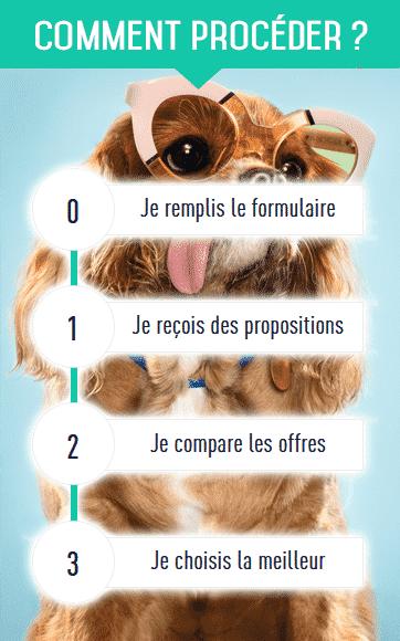 comparer en ligne meilleure assurance chien