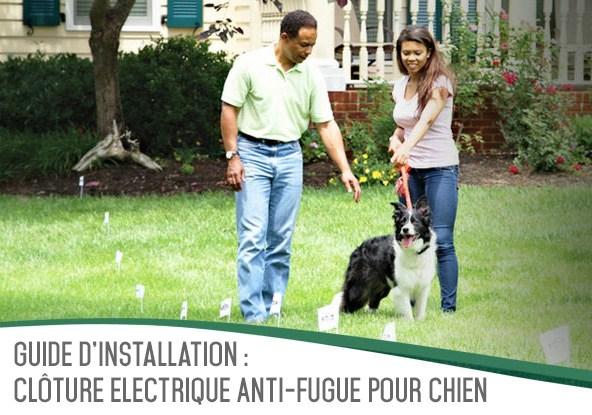 Guide : Comment installer une clôture anti-fugue pour chien ...