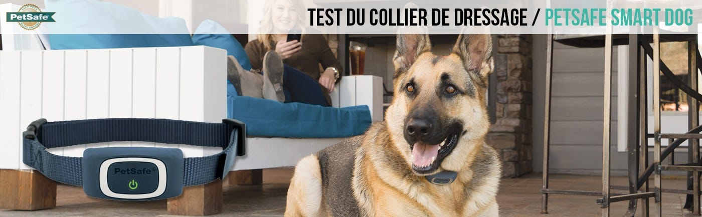 collier-dressage-petsafe-smartdog-connecte