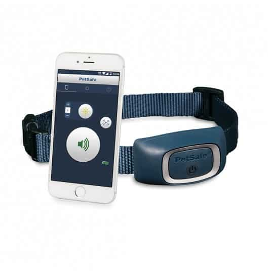 collier-dressage-smartdog-petsafe