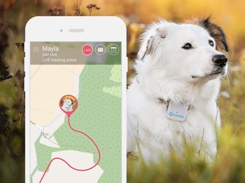 Live Tracking Tractive