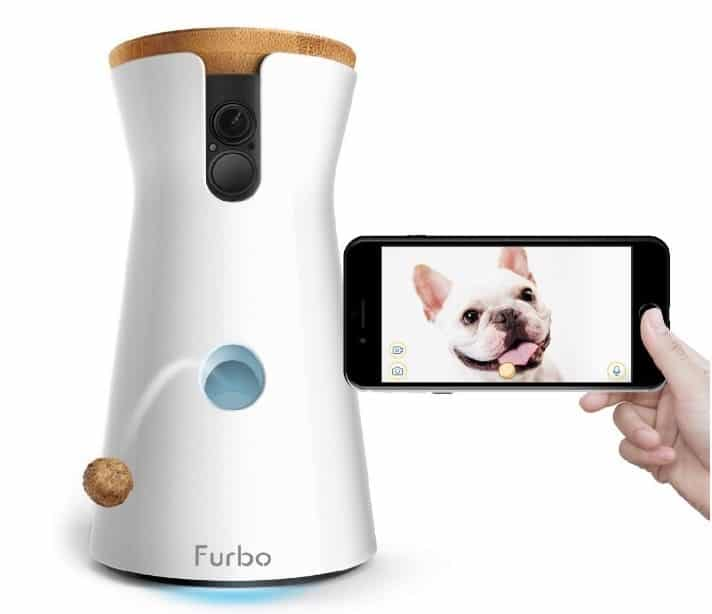 Furbo dog camera : la caméra interactive dont vous avez besoin !