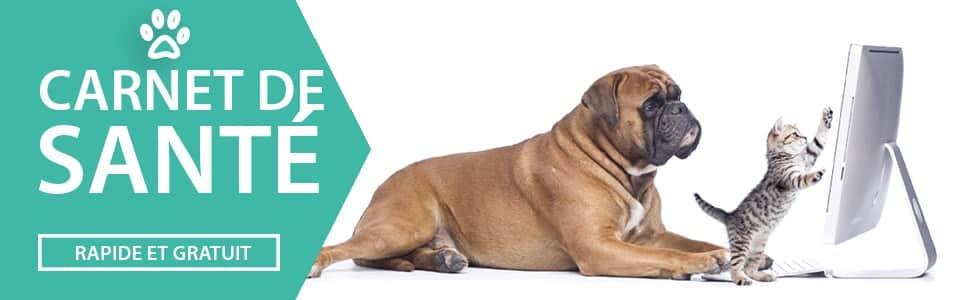 carnet de santé chien