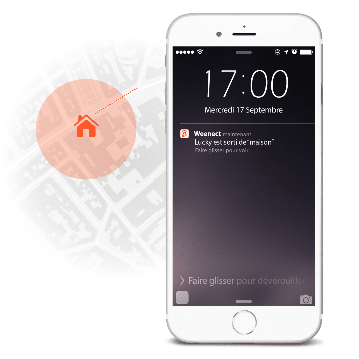 Feature Geofence Dogs