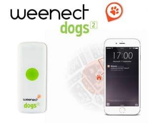 weenect-dogs-2-avis