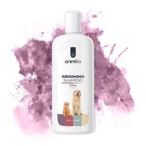 shampoing-allergies-chien